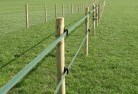 Daroobalgie Electric fencing 4